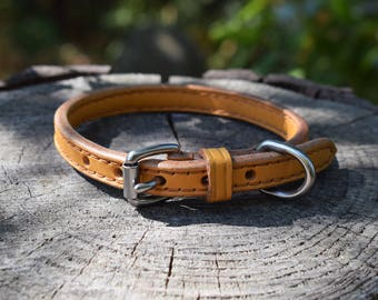 Lined Leather Dog Collar - size XS