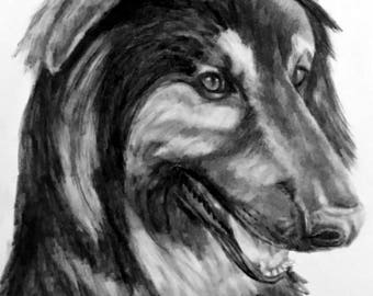 "11x14"" custom pencil portrait of your pet"