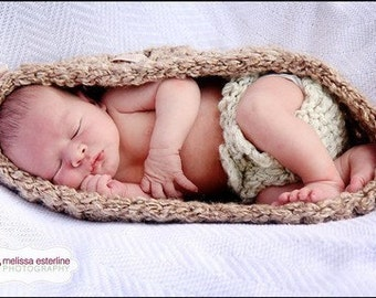 Basket and Diaper Cover Newborn Egg Bowl Baby Photo Prop in Browns Cream - Photography Set 2pcs Infant Girl Boy Photo Shoot