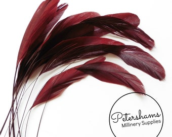 Loose Stripped Coque Feathers (Pack of 10) for Millinery & Fascinators - Mahogany