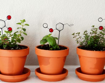 TRIO - Stained Glass Herb Plant Stakes - Thymol/Carvacrol/Estragole
