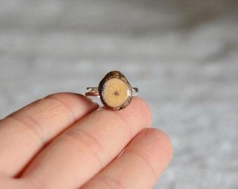 Anello d'argento scintillante iridescente opalescente, gioiello in legno naturale, anello in vero legno, regalo per lei, fatto di legno da MyPieceOfWood