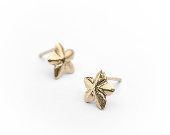 Women Gold Star Earrings, Stud Earrings, Love Gift, Solid Gold Earrings Perfect Gift For, Gold Star Studs,Star Studs