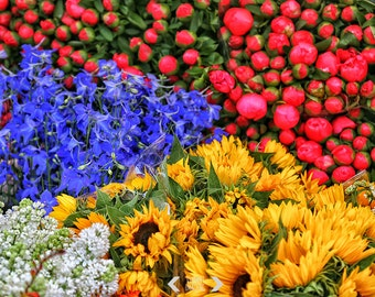 Spring Photography Print, Colourful flowers Print, Landscape Print, Cottage Home Decor, Colorful Wall Art, Floral Artwork, Red Blue Yellow