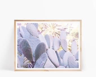 Modern Cactus Print, Cactus Wall Art, Desert Wall Art, Desert Photography,South Western Wall Art, Desert Digital Download, Cactus Art Print