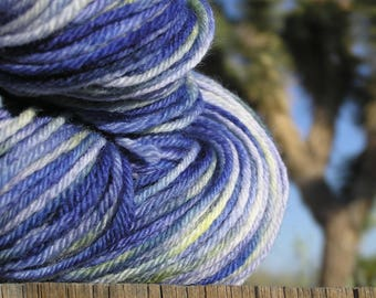 Worsted Weight Yarn - BFL Wool Superwash -   Wild Canterbury Bells