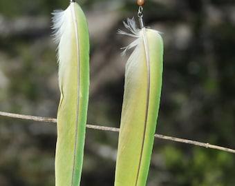 Long Green Feather Earrings