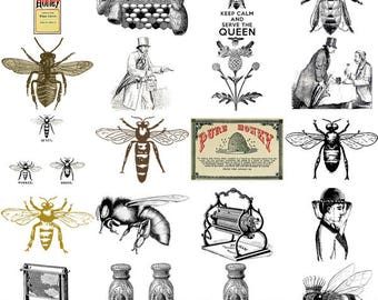 Bees - Hives - Honey & Beekeeping Digital Images - 100 Image Bumble Bee PNGs - Digital Clipart Bees Apiary Graphics - Instant Download