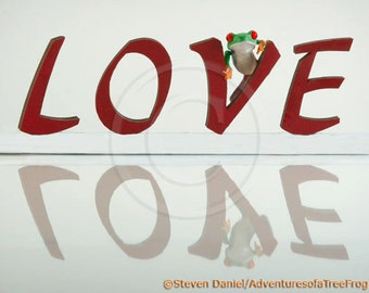 LOVE, love letters with frog, part of: Live Love Laugh, letters of love, I love you, photograph