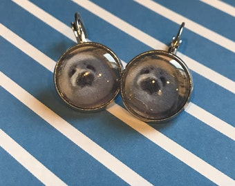 White seal pups cabochon earrings - 16mm