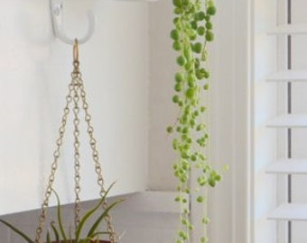 Hanging copper air plant holder