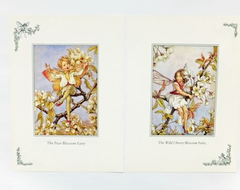 Flower Fairies, Two Cicely Mary Barker Prints, Blossom Flower Fairies Pictures, Nursery picture