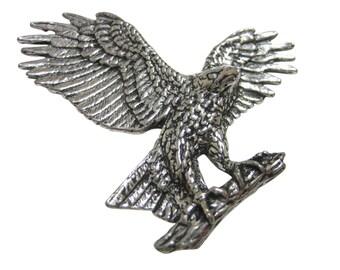 Hawk Eagle Falcon Bird Magnet