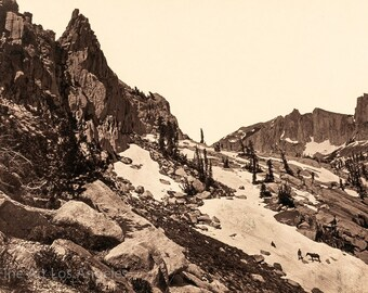 "Timothy O'Sullivan Photo, ""Summit of the Wahsatch Range, Utah"" 1869"