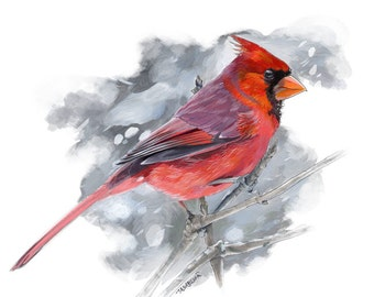 Cardinal Painting / Bird Painting / Wall Art / Acrylic Print / Acrylic Painting / boyfriend gift / coworker gift / best friend gift
