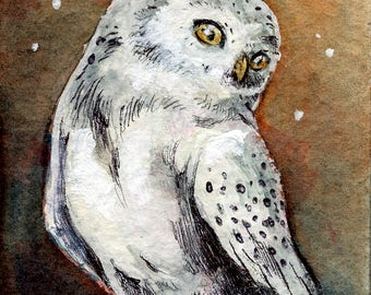 Snowy Owl ACEO ATC - original aceo white owl - owl original art - Hedwig aceo - owl in the night