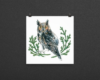 Great Horned Owl Nature Art Print Unframed