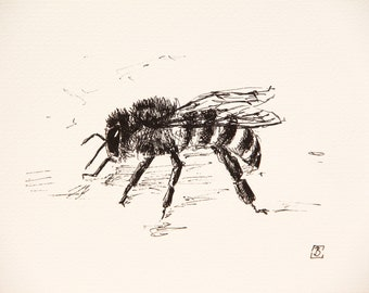Bee original drawing, Original art, Drawing art, Pen drawing, Bobapainting
