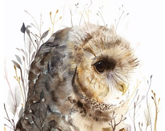 Owl art, owl painting, owl watercolor painting- Owl art- Spotted Owl -large print after original watercolor
