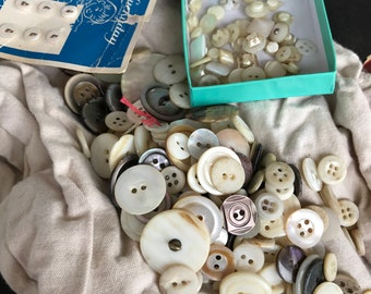 Shell SEaShell Button Collection Small, tiny, and medium over 100