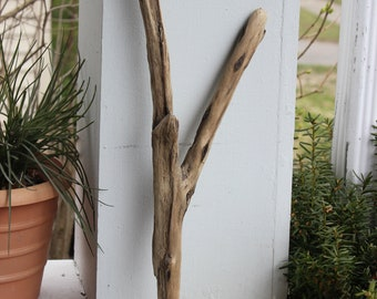 Driftwood Y , Jewelry Photo Prop , Natural Home Decor , Boho Art Supply , Beach Decoration
