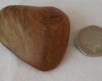 Wooden shell , wood pendant , walnut jewellery , fiddlestick
