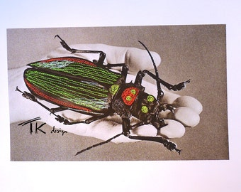 Entomology, embroidered bug, freehand embroidery, textile art