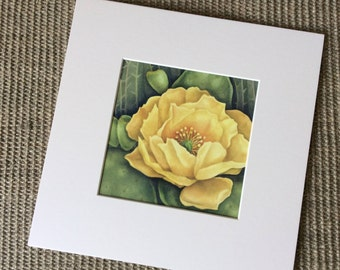 Cactus Flower Signed Archival Watercolor Print