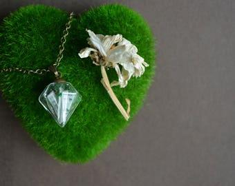 Morass Terrarium Necklace with Clear Quartz and Moss | Terrarium Necklace | Moss Necklace | Terrarium