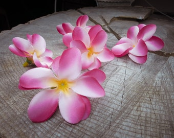 Frangipani Flowers ~100 pieces #100727