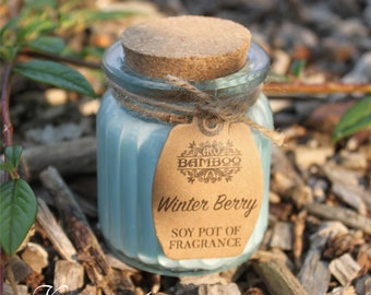 Soy Wax candles winter berries in glass with cork lid