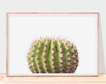Cactus impression, art mural cactus, décor botanique art imprimable impression, vert et rose, décor de mur végétal désert, téléchargement immédiat cactus impression
