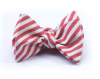 Bow Tie - Coral Stripe