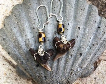 Tigershark Teeth Earrings