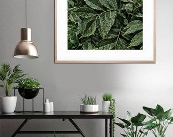 Leaves Art Print • Green Leaves, Kubitees, Kubitees Art, Art Print, Home Decor, Bedroom Decor, Nature, Nature Prints, Digital Download, Calm