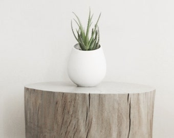 Tree Stump Side Table w/ brushed nickel legs