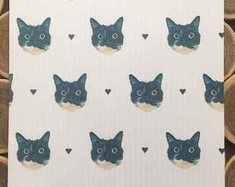 Paper Envelope SET / CAT