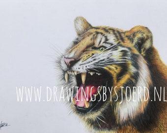 Tiger Print