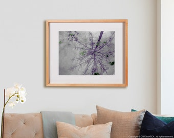 Purple Rain Print.  Nature photography, purple, tree reflection, decor, wall art, artwork, large format photo.