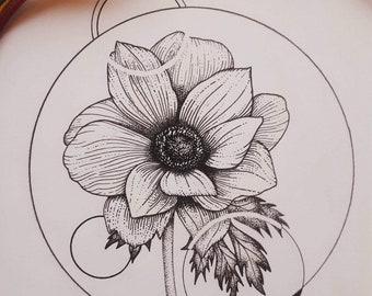 Anemone - black ink illustration drawing