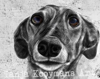 Greyhound, greyhound art,  Galgo, galgo art, Galgo Espagñol, Sighthound, Whippe, Dog Art print,  custom dog portrait,print 8x12 inch