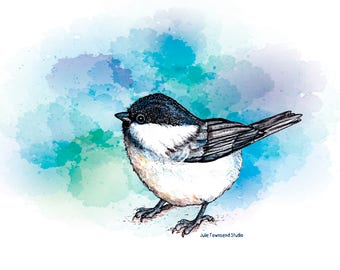 Chickadee Print, Black Capped chickadee, Glossy Print-Pen & Ink Country Farmhouse art- nursery, kitchen, Primitive