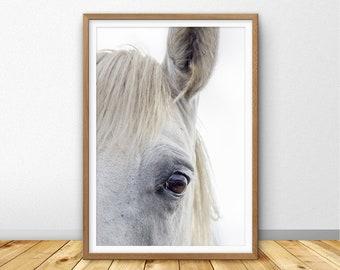 Horse Print, Horse Wall Art, Horse Photography, Horse Large Wall Art Printable, Horse Eye Photo, Horse Poster, Farm Animal Print (W0911)