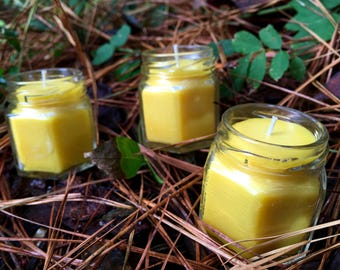 Beeswax Candles, Set of 3 Candles, Wedding Candles, Wedding Favors, Candles, Beeswax, Beeswax Hex Jar, Hex Jar Candles