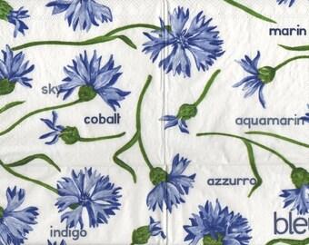 3261 lot 3 paper wild blueberries