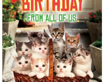 J5980BDG-US Jumbo Humorous Birthday Greeting Card: From All Us Cats, with Envelope