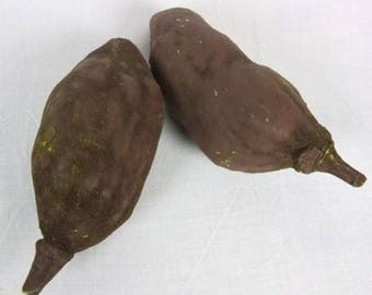 3  x  baobab pod  fruit - 12-18cm - natural floral and craft -nuts, seeds and po