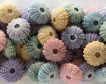 Lot of 50  SUMMER Sea Urchin Soaps - Beach, Soap, Nautical, Beach Wedding, Weddng Favor, Beach Theme, Sea Urchins, Custom Colors Welcome