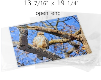 25 - Open End Clear Sleeves Fit 13 x 19 Photos - Archival - 1.6 Mil - 13-7/16 x 19-1/4 inches