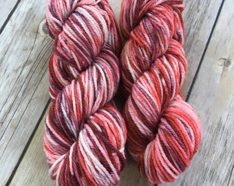 Peppermint Twist Superwash Merino/Nylon DK Yarn Mini Skeins - Hand Dyed